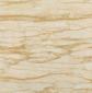 白树纹釉面砖