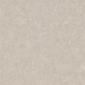 金西米石抛光砖